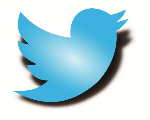 twitter logo twitter bird twitter shadow bird