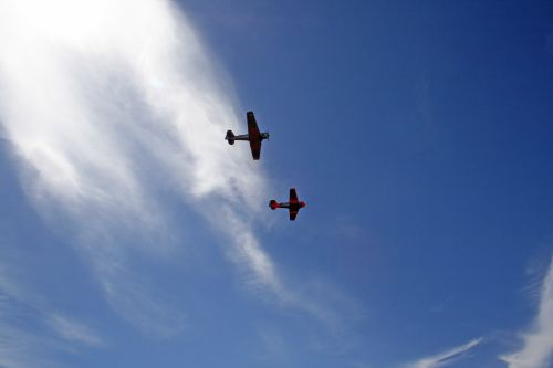 Two Harvards Against The Sky