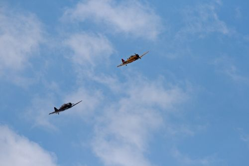 Two Harvards Flying In A Display