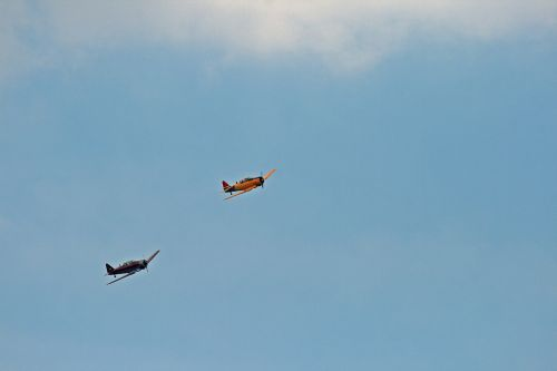 Two Harvards On Display In The Sky