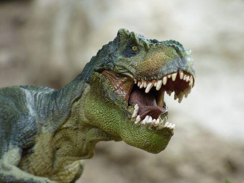 tyrannosaurus dinosaur prehistory