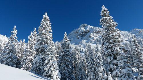runners head winter backcountry skiiing