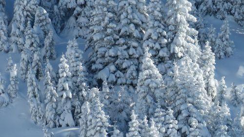 tyrol tannheimertal winter
