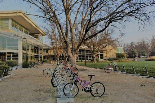 uc davis  bikes  campus