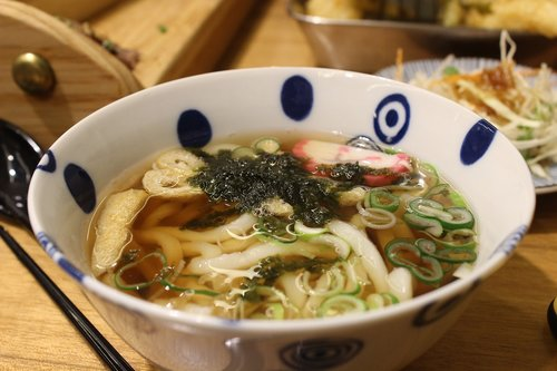udon noodles  japanese  dining