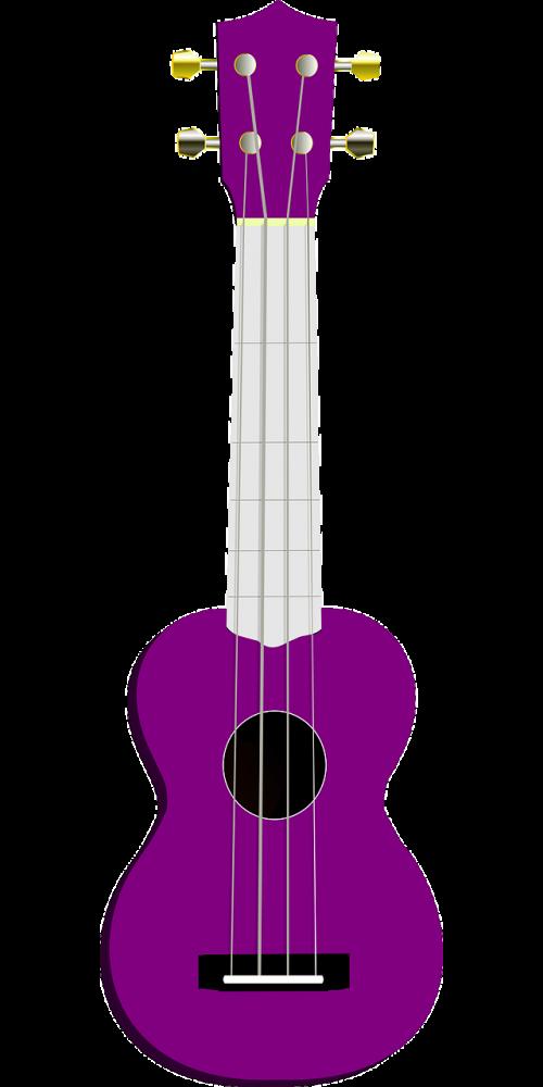 ukulele guitar acoustic guitar