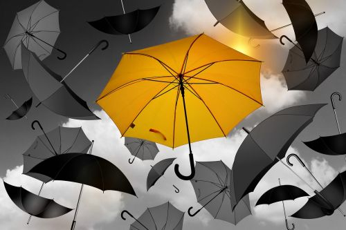 umbrella yellow black