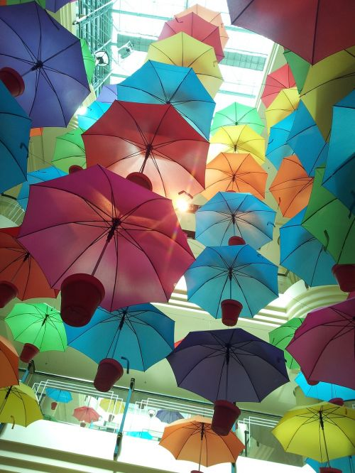umbrella hang pots
