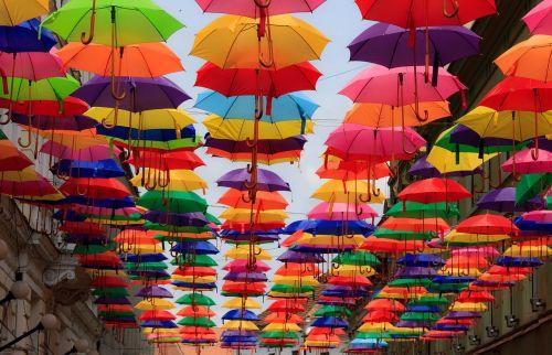umbrella colorful multicoloured