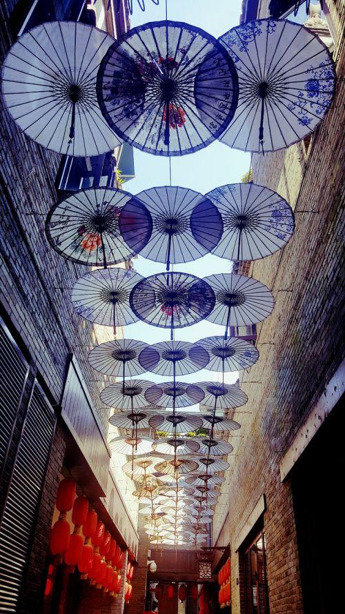 skėtis,alėja,kūrybingas