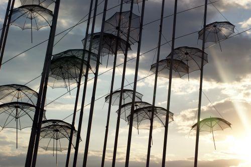 umbrella umbrellas black