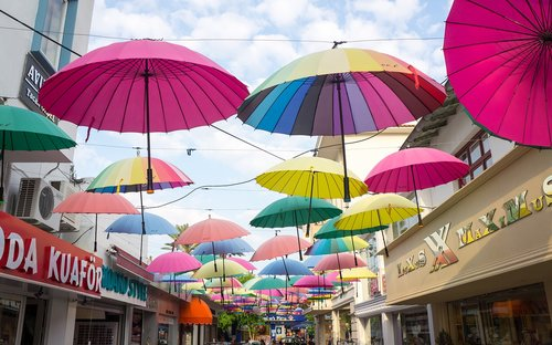 umbrella  tourism  parasol