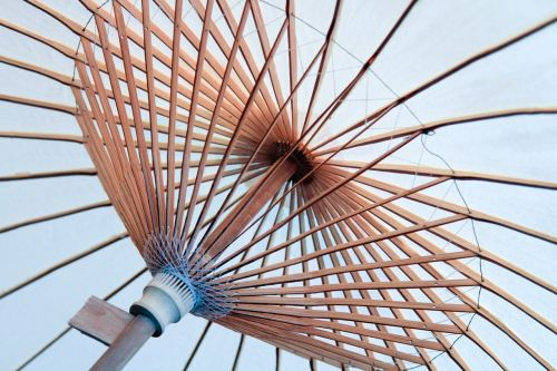 umbrella spokes canopy