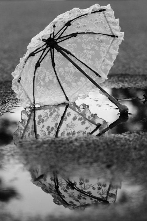umbrella  puddle  water