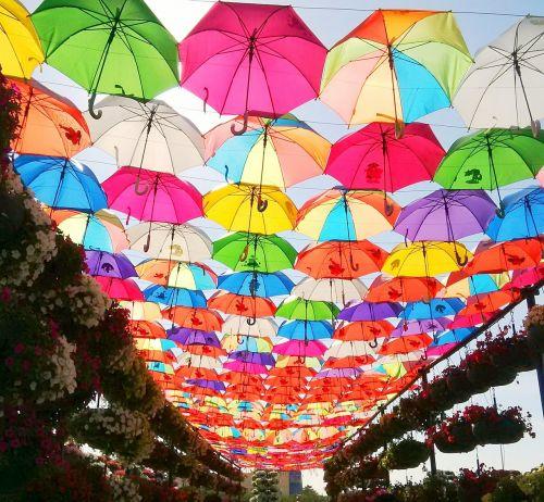 umbrella park colorful