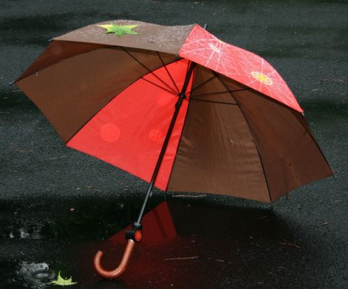 umbrella rain protection