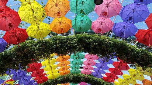 umbrellas arch garden