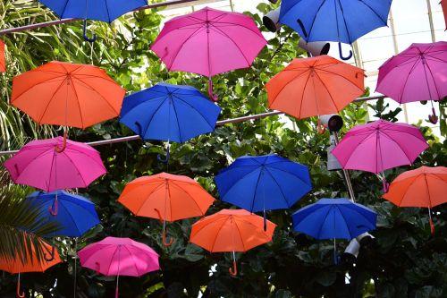 umbrellas colorful weather