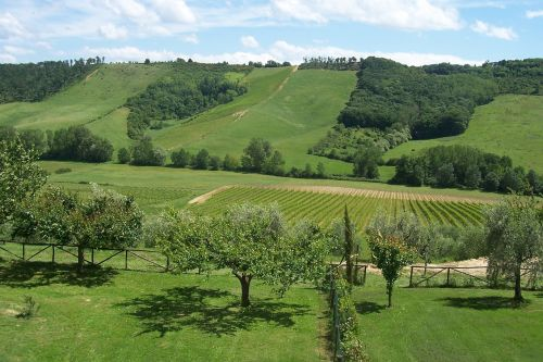 umbria hill cottages-vacation rentals