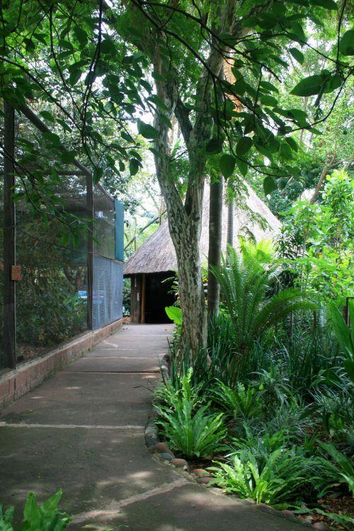 Umgeni Bird Park Aviary & Path