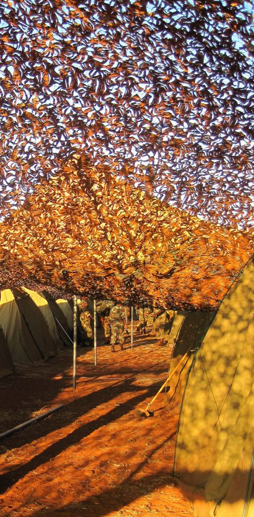 Under Camouflage Netting
