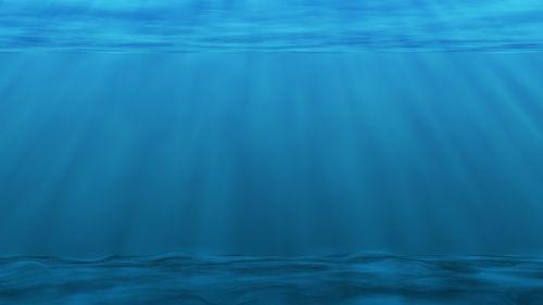 underwater sea ocean plankton