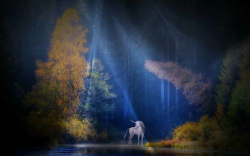 unicorn fairy tales mythical creatures