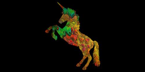 unicorn  horse  rider