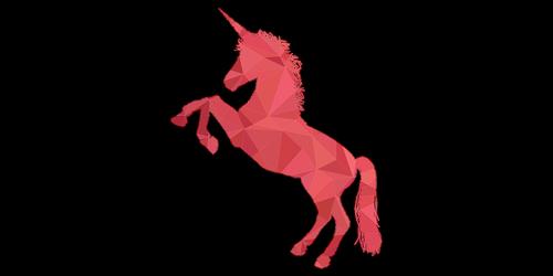 unicorn  orange  pink
