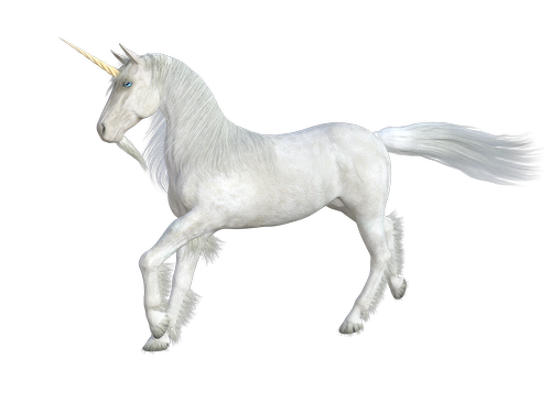unicorn  horse  mythical creatures