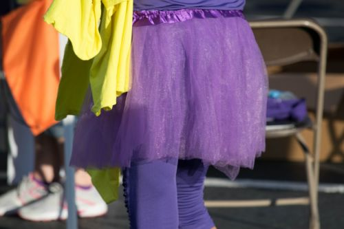 skirt purple chiffon
