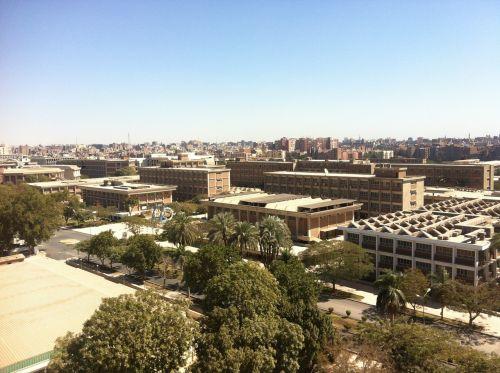 university egypt college