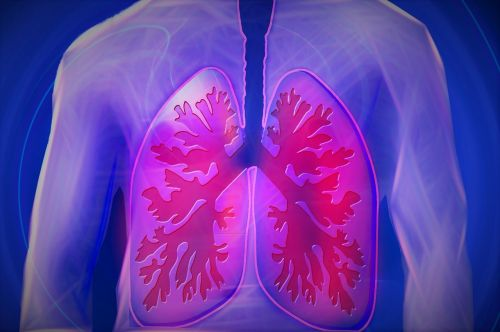 upper body lung copd