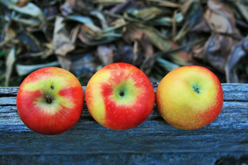 Upside Down Apples