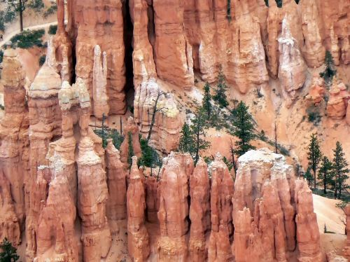 usa cliff bryce canyon