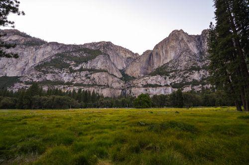 usa,amerikietis,josemitas,Nacionalinis parkas,Rokas,žolė,gamta,žalias,Josemito slėnis,slėnis