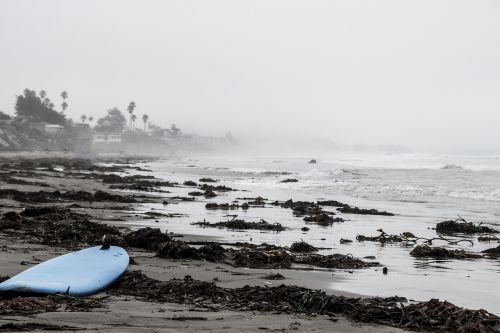usa beach surfboard