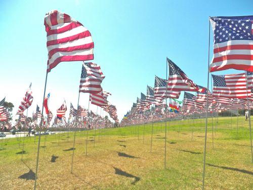 usa flag american flag flag