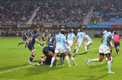 usap rugby perpignan