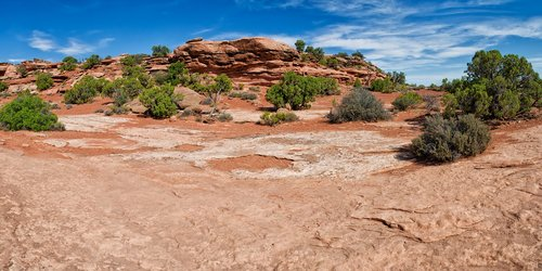 utah  desert  nature