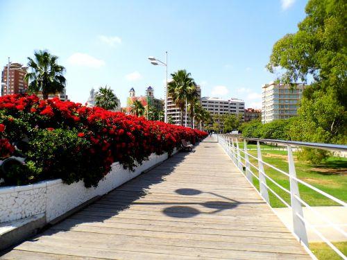 valencia españa puente de los flores