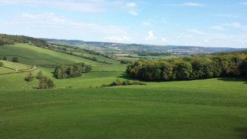 valley burgundy green