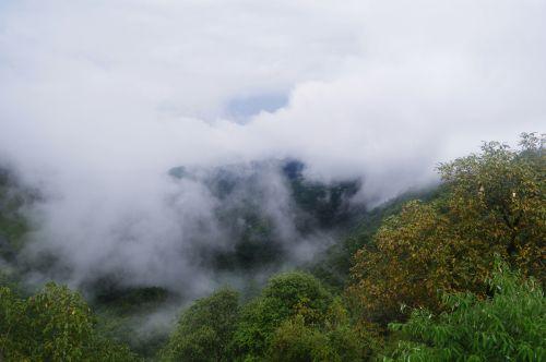 kalvos, slėnis, debesys, gamta, medžiai, dangus, kalnas, debesų slėnis 03