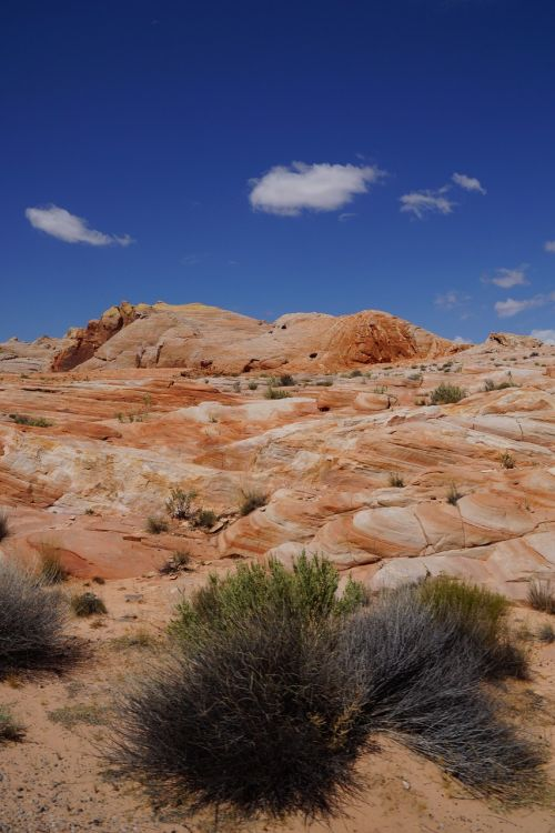 valley of fire usa cliff