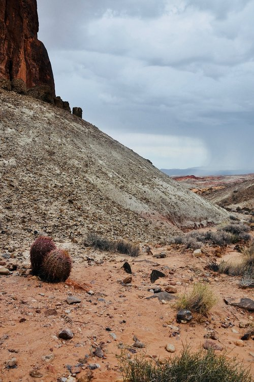 valley of fire  america  national park