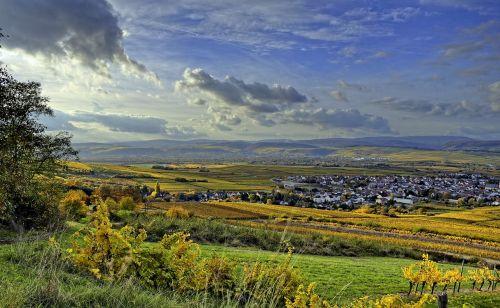 valley view autumn vineyards