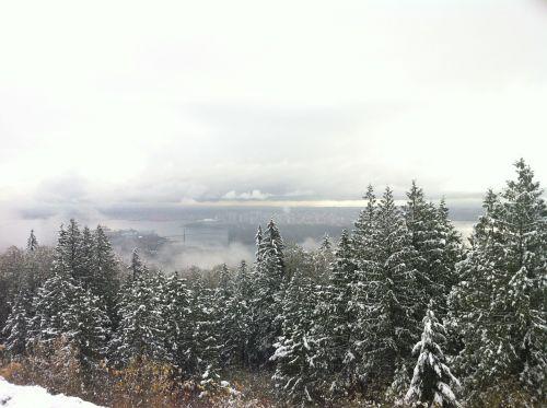vancouver snow fog