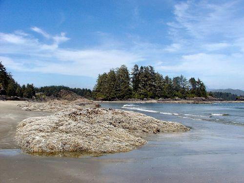 vancouver island tofino long beach