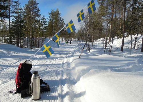 vasaloppet ski trails competition