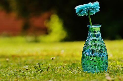 vazos,stiklas,gėlė,apdaila,mėlynas,skaidrus,deko,trapi,dekoblumas